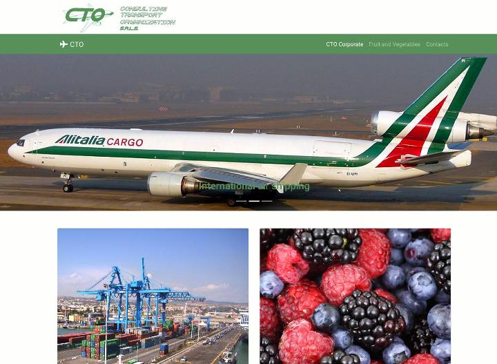 Sito web di CTO Consulting Transport Organization di Roma.